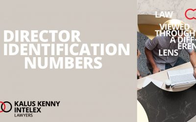 Director Identification Numbers – what you need to do to prepare and what they mean for you